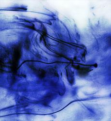 Fluid Swirl