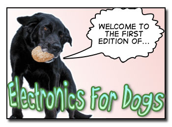 Electronics for Dogs, Part I